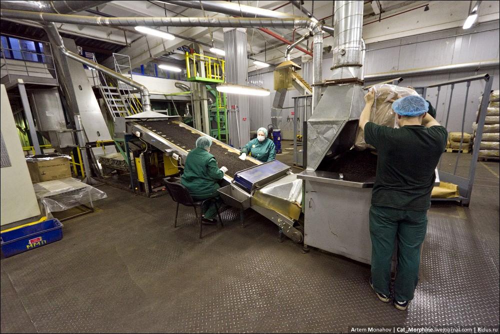 Фабрика по производству чая